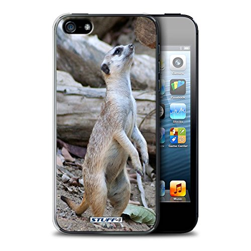 Coque de Stuff4 / Coque pour Apple iPhone 5/5S / Loup Design / Animaux sauvages Collection Suricate