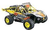Rayline Funrace 01S-E - 1:18 Pro Sand-Buggy 4WD mit 1500 mAh LiPo Akku bis 70 km/h schnell