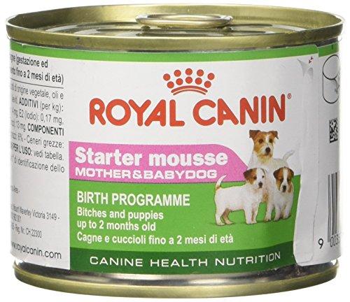Royal Canin Hundefutter Starter mousse, 195g, 12-er - Starter Canin Royal Mousse