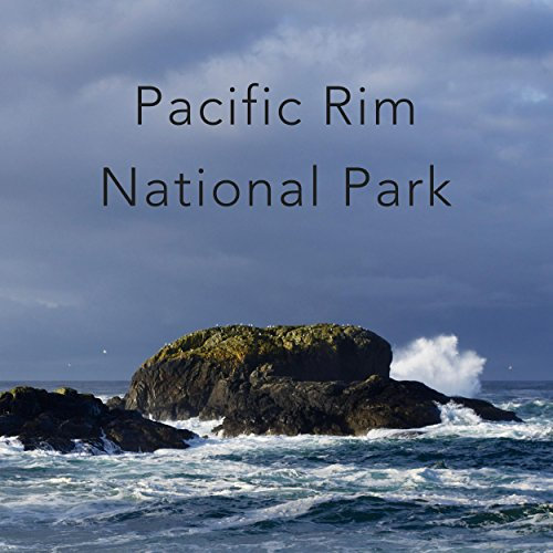 ocean-waves-at-south-beach-pacific-rim-national-park
