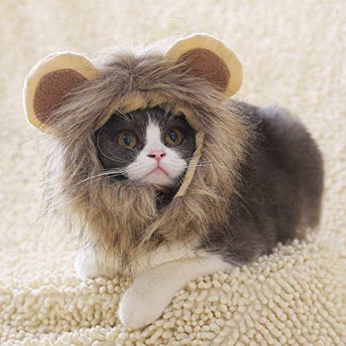 Löwen-Kostüm Katze Hut Lustige Stirnband Löwenmähne Kopfbedeckung mit Ohren für Halloween, Partys, Feste Haustier Perücke Zubehör Cosplay für Kleine Hunde Welpen (S)