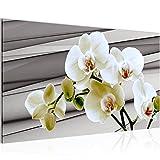 Bild Blumen Orchidee Wandbild Vlies - Leinwand Bilder XXL Format Wandbilder Wohnzimmer Wohnung Deko Kunstdrucke 70 x 40 cm Braun 1 Teilig -100% MADE IN GERMANY - Fertig zum Aufhängen 202014b