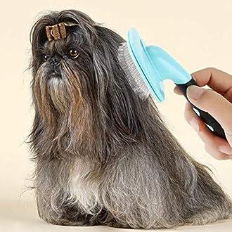 Hundebürste Bild