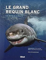 Le grand requin blanc : Du mythe à la réalité