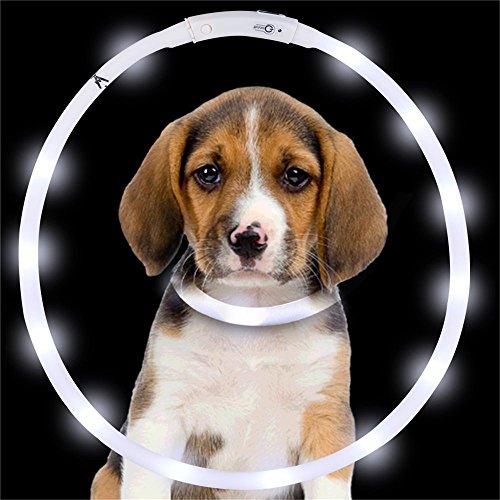 Nachtlicht Weiß USB Wiederaufladbare LED Leucht Hundehalsband Wasserdicht Einstellbare Blinkende Pet Sicherheit Kragen 1 STÜCKE -