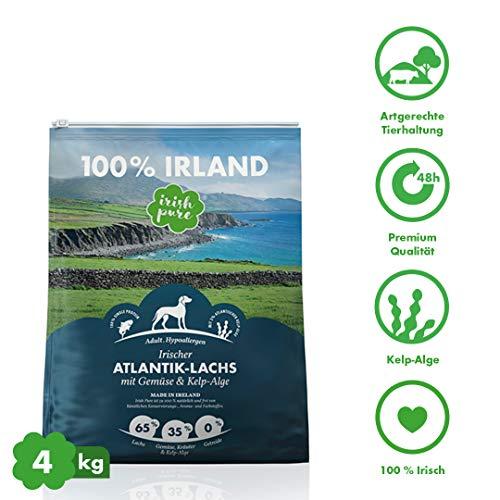 Irish Pure Adult Atlantik-Lachs mit Kelp-Alge & Gemüse - Hypoallergenes Trockenfutter für Hunde, Hoher Fleischanteil, Getreidefrei, Sensitiv, Bio Hundetrockenfutter, Hundefutter für alle Rassen
