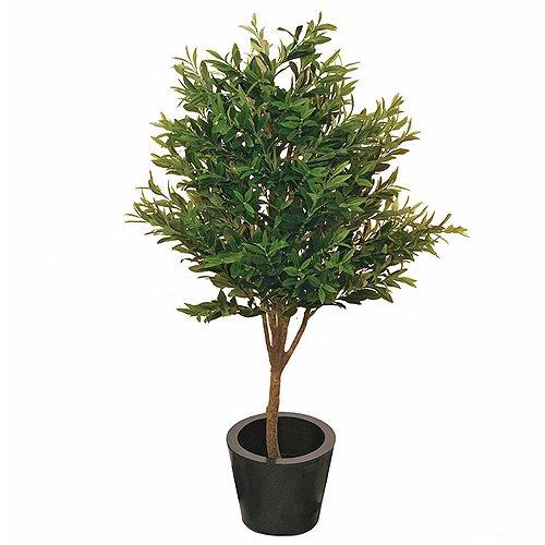 Euro Palms 82506414 Olivenbaum, 130 cm