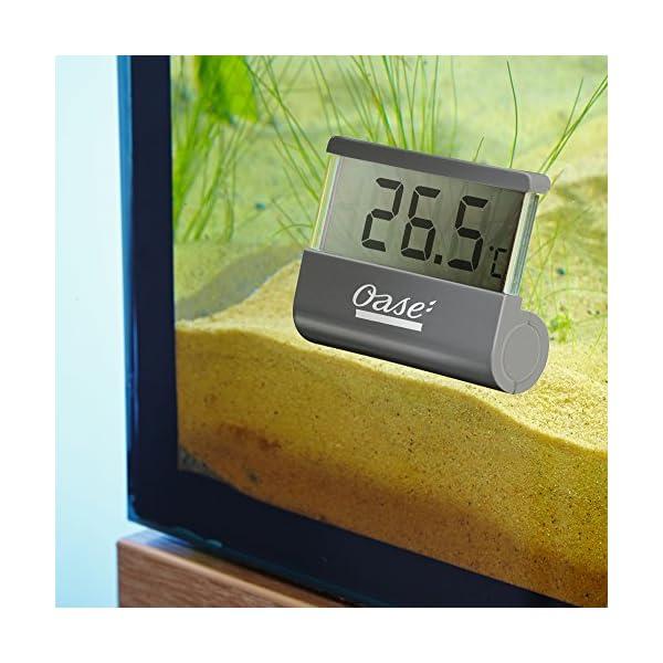 Digital Aquarium Thermometer – Oase
