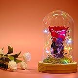 Konservierte Blume, Funpa Enchanted Rose Eternal Rose Blume im Glas für Valentine Mit LED Leuchten