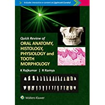Quick Review of Oral Anatomy, Histology, Physiology and Tooth Morphology