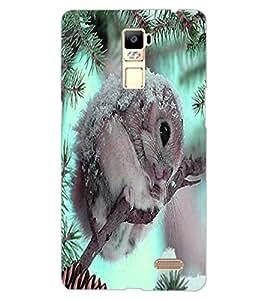 ColourCraft Cute squirrel Design Back Case Cover for OPPO R7