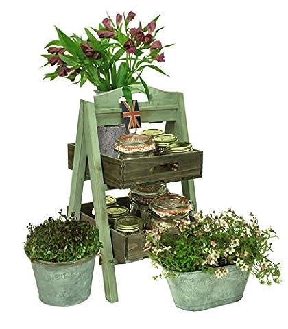 east2eden Vintage Rustic Display Shelf Unit Wood Florist Shop Farm Market Plant Pot Holder (Pistachio & Brown 2 Tier