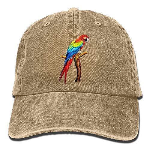 Parrot Denim Baseball Hat Adjustable Cotton Sport Strap Cap for Men Women -