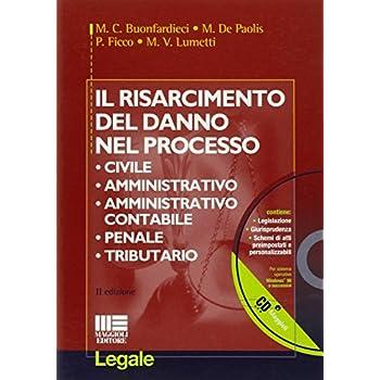 Il Risarcimento Del Danno Nel Processo Civile, Amministrativo, Amministrativo Contabile, Penale, Tributario