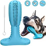 RUCACIO Hunde zahnbürste Hundespielzeug Dog Toothbrush Hunde zahnen Kauspielzeug Hunde Zahnpflege Naturkautschuk Hund Kauen Zahnreiniger Zahnbürste Zahnreinigung Geschenk (Passt 40-80 Pfund Hund)