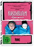 Kirschblüten - Hanami - Hanno Lentz
