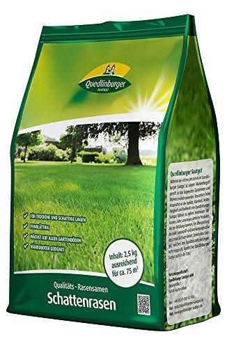 Rasensamen - Schattenrasen 2,5 kg von Quedlinburger Saatgut