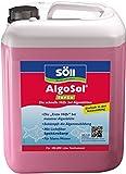 Söll 10892 AlgoSol forte - Die schnelle Hilfe bei Algenblüten - 5 l