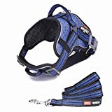 DogHelios Reflective Breathable No Pull Adjustable Service Dog Vest Harness with Leash M Blue