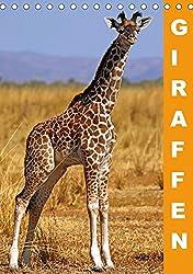 Giraffen - Afrikas Größen (Tischkalender 2018 DIN A5 hoch): Die Welt der höchsten landlebenden Tiere der Erde (Monatskalender, 14 Seiten ) (CALVENDO Tiere) [Kalender] [Apr 01, 2017] Woyke, Wibke