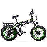 Rich BIT RT-016 48v 500w 9.6Ah 20 Pouces Pliant Gros Pneu vélo électrique E vélo Ebike Snow Fat Bike avec écran LCD Intelligent (Green)