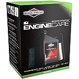 Briggs & Stratton 992236 Powerbuilt Kit d'entretien moteur, Noir