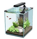 Nano Cubic 40 schwarz Aquarienset, Nano Cube mit LED Beleuchtung, Filter, Pumpe &...