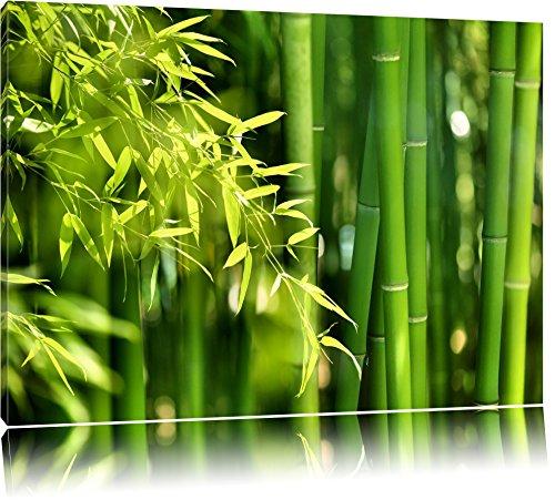 Grüner frischer Bambus mit Blättern Format: 100x70 auf Leinwand, XXL riesige Bilder fertig gerahmt mit Keilrahmen, Kunstdruck auf Wandbild mit Rahmen, günstiger als Gemälde oder Ölbild, kein Poster oder Plakat (100% Bambus-blätter)