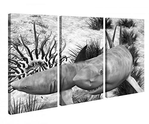 Leinwandbild 3 Tlg Hai Haie weiß Wasser Koralle Meer Schwarz weiß Leinwand Bild Bilder Holz fertig gerahmt 9P1104, 3 tlg BxH:120x80cm (3Stk 40x 80cm)