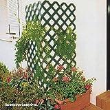Videx-Rankgitter Spalier Coventry-Classic, Kunststoff grün, 60 x 120cm