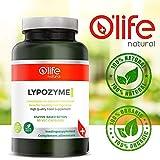 O'Life Natural´s LYPOZYME - Effektive Lipase Enzym Formel - Tägliche Verdauungsunterstützung für gesündere Cholesterinwerte - Wirksame Fett- und Kohlenhydratverdauung - 90 Veg-Kapseln
