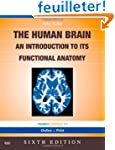 Nolte's The Human Brain: An Introduct...