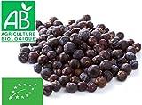Baies de Genièvre Bio 100g (Genévrier Juniperus communis)