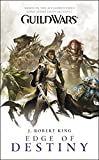 Image de Guild Wars: Edge of Destiny (English Edition)