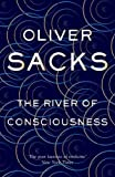 #7: The River of Consciousness