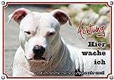Hundeschild - American Pitbull Terrier - Metallschild rostfrei und beständig, DIN A5