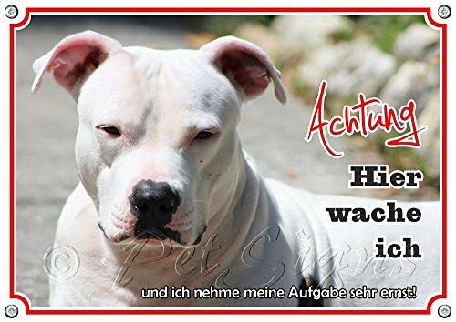 Petsigns Hundeschild - American Pitbull Terrier - Metallschild rostfrei und beständig, DIN A5