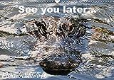 See you later ... Florida Wildlife (Wandkalender 2020 DIN A3 quer): Alligatoren und andere Spezies aus der Fauna Florida's (Monatskalender, 14 Seiten ) (CALVENDO Natur) -