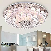 XXTT- SUNWEIT@ 220V Modern Flush Mount 12 Lights with Glass