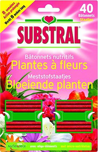 fertiligene-3989-lot-de-40-batonnets-nutritifs-pour-plantes-fleuries