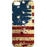 Casotec USA Flag Design Hard Back Case Cover for Apple iPhone 5 / 5S