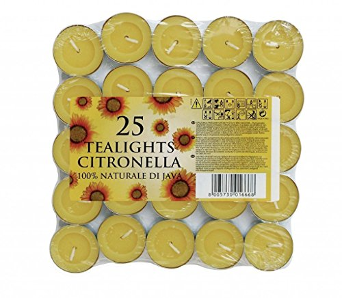 cb-imports-citronella-tea-lights-set-of-25