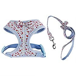 Imported Sweet Floral Dog Puppy Harness Leash Lead Walking Collar Vest Strap Blue XS