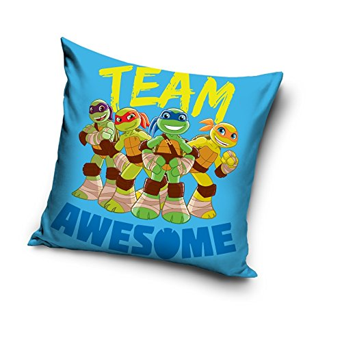 Tortues Ninja Bleu Team Awesome décoratifs Housse de coussin Taie d'oreiller Home Decor