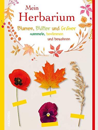 Mein Herbarium - Blumen, Blätter und Gräser sammeln, bestimmen und bewahren