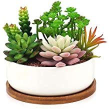 Innoter, vaso in ceramica bianca con vassoio in bambù, ideale per fiori e cactus, pattern 1