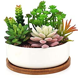 INNOTER Succulent Planter, Modern White Ceramic Cactus Flower Pot Plant Pot with Bamboo Tray (Round)