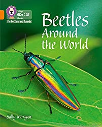 Collins Big Cat Phonics for Letters and Sounds – Beetles Around the World: Band 6/Orange