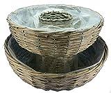 """Pflanzkorb """"Ring"""" 2er Set 38 x 13cm - natur -"""