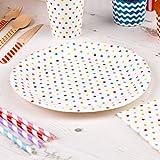 Premium Weddings Pappteller Polka Dots bunt 8 Stück - Einwegteller Hochzeit Partyteller Kindergeburtstag Punkte bunt ca. 23 cm